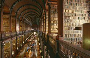 Biblioteche Dark Zone